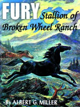 Скачать Fury: Stallion of Broken Wheel Ranch - Albert G. Miller
